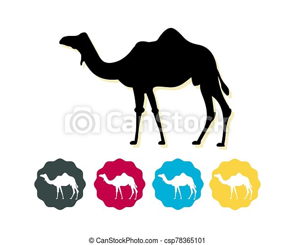 Camel silhouette as Flat Icon - csp78365101