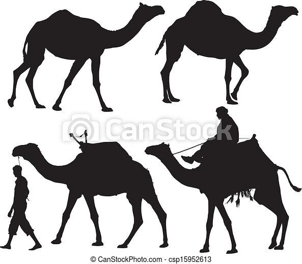 Camel - csp15952613