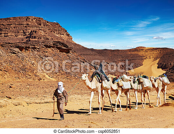 Camels caravan in Sahara Desert, Algeria - csp6052851