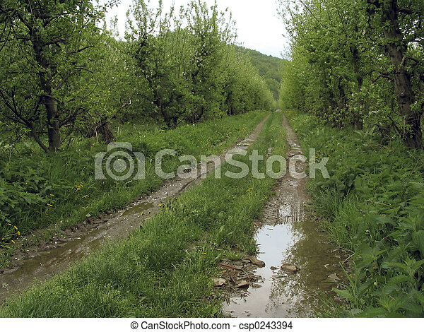 Rural - csp0243394