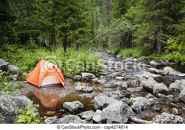 Camping in the Forest - csp4274814