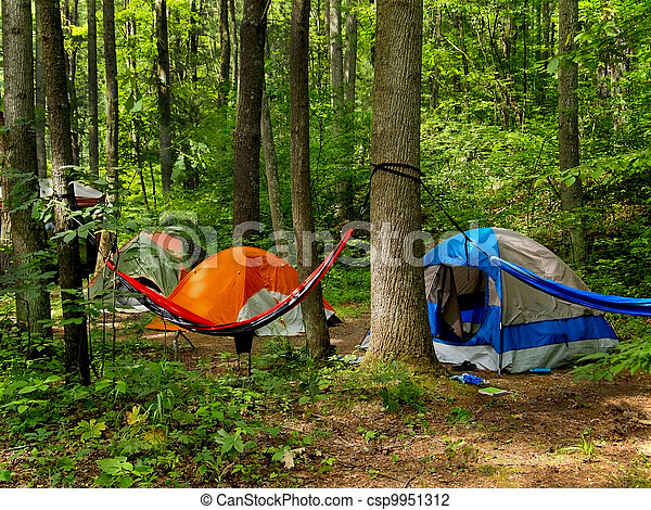 camping in the woods. Contemporary The Camping In The Woods  Csp9951312 And