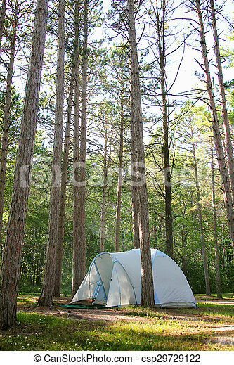 camping in the woods.  Woods Camping Tent In Pine Tree Woods Up North  Csp29729122 In The