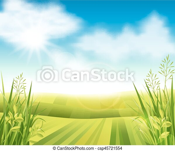 Campo de granja verde - csp45721554
