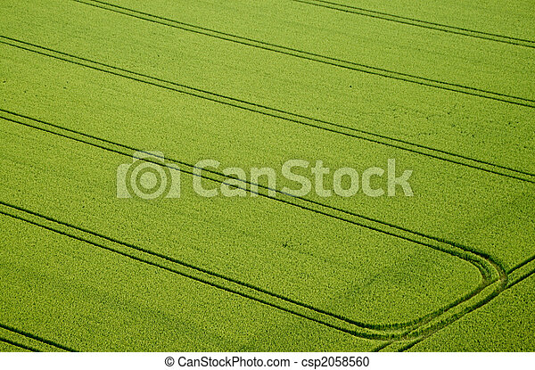 Cornfield, foto aérea - csp2058560
