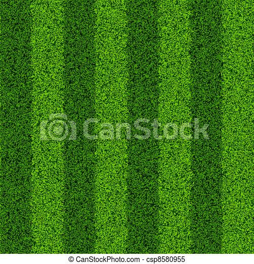 Campo de hierba verde - csp8580955