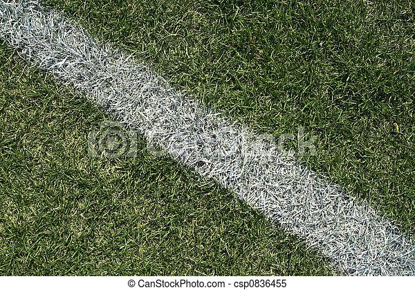 Línea límite blanca de un campo de juego - csp0836455