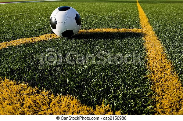 Bola de fútbol o fútbol en un campo - csp2156986