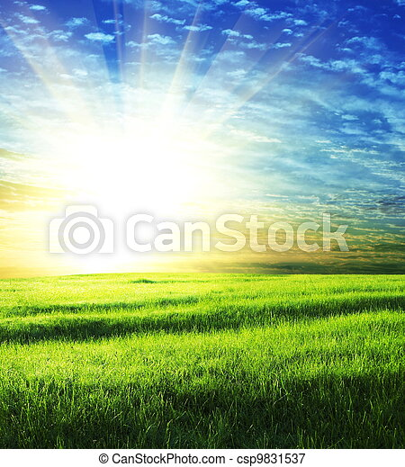campo, salida del sol - csp9831537