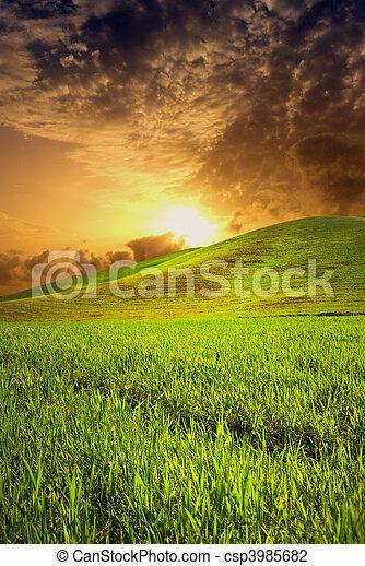 campo, tramonto - csp3985682