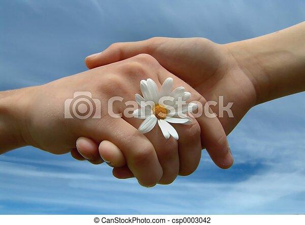 Friends - csp0003042
