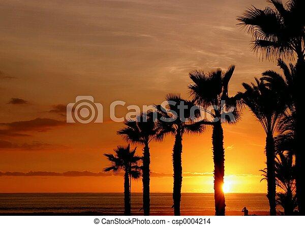 sunset - csp0004214