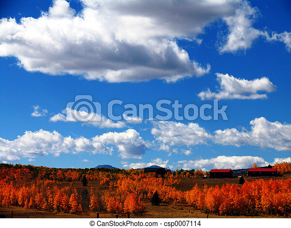 Colorado Sky - csp0007114