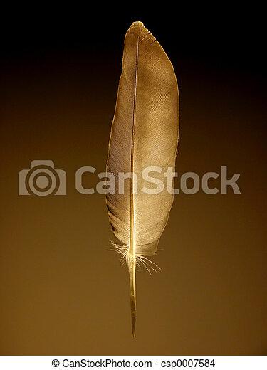 Feather - csp0007584