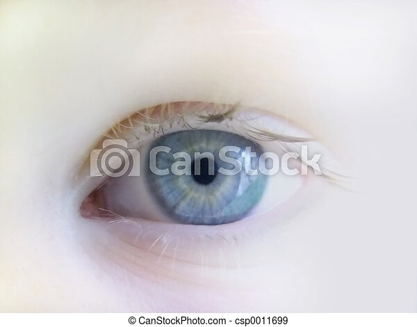 eye - csp0011699