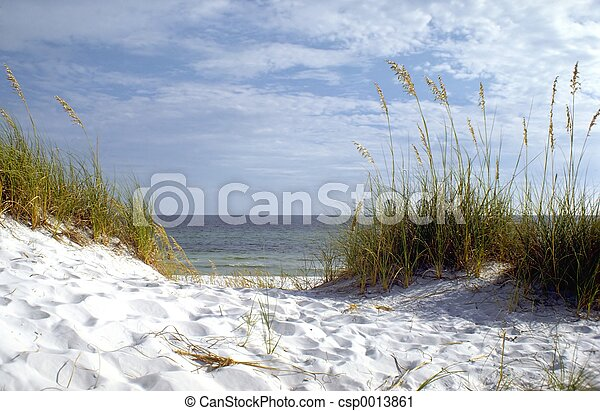 Florida Beach - csp0013861