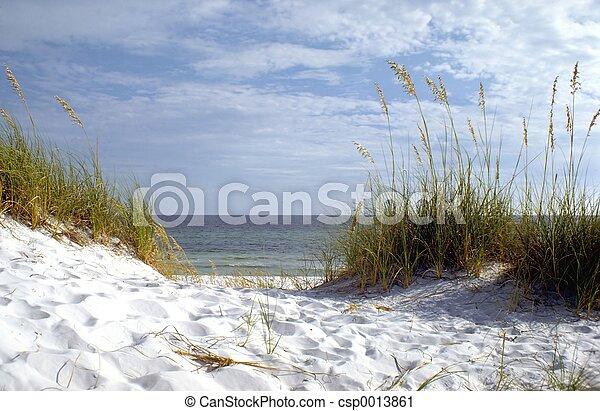 Florida Beach - csp0013861