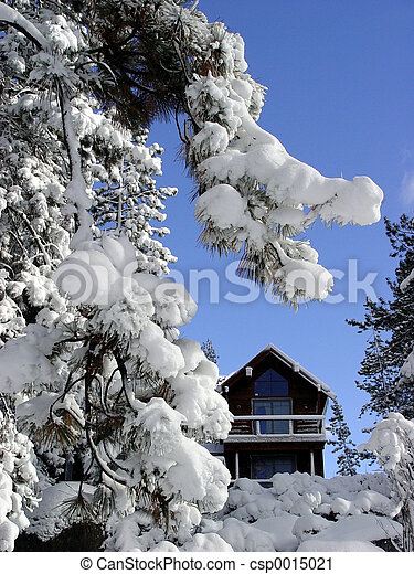 Cabin in the snow - csp0015021