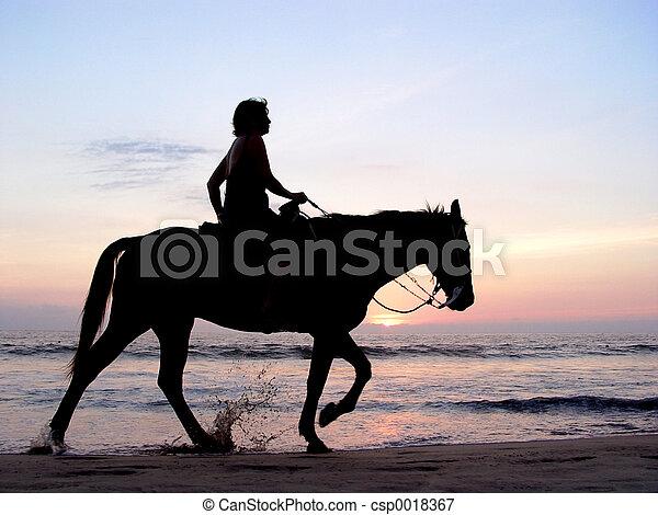 Lone rider at sunset - csp0018367