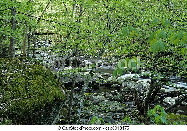 Spring, Tremont - csp0018475