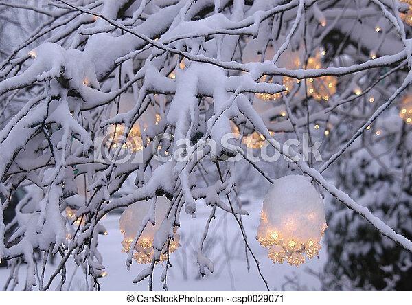 ライト, 2, クリスマス - csp0029071