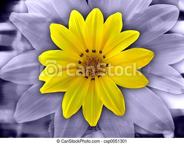 Artistic Flower - csp0051301