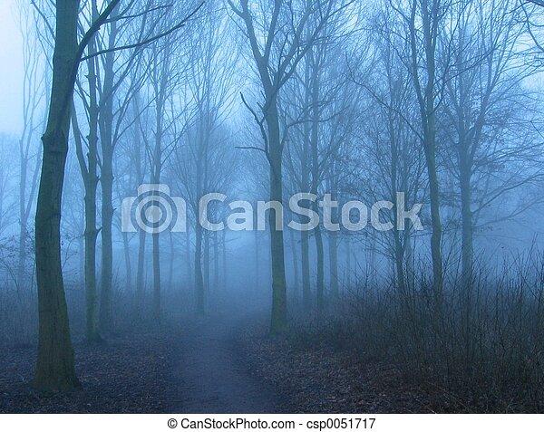 hiver, matin - csp0051717