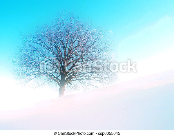 Tree on hill; winter time; dream tone