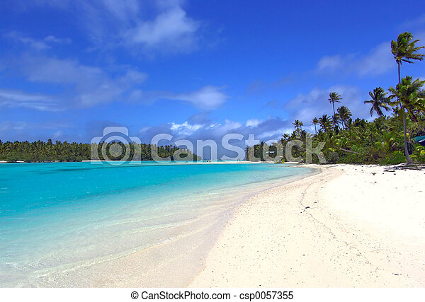 Tropical - csp0057355