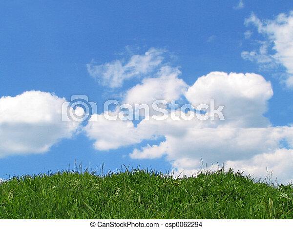 Sky and grass - csp0062294
