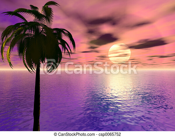 Sunset with Palm Tree - csp0065752