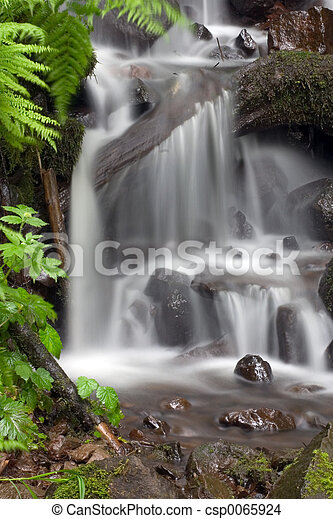 Tropical waterfall. - csp0065924
