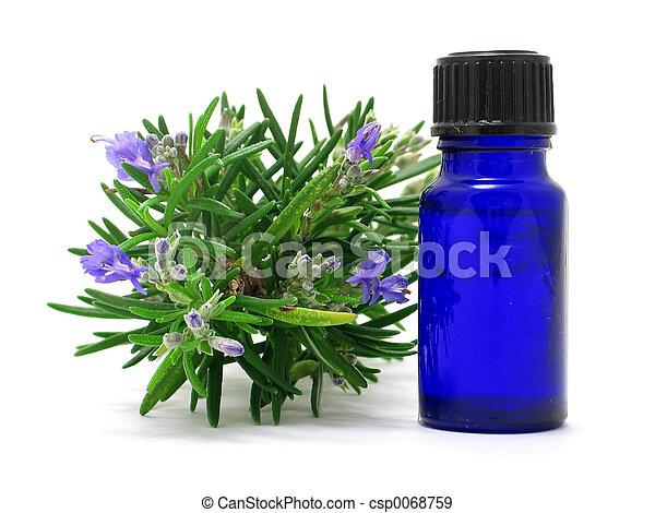 Rosemary herb & Oil - csp0068759