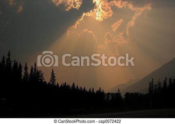 smokey sun - csp0072422