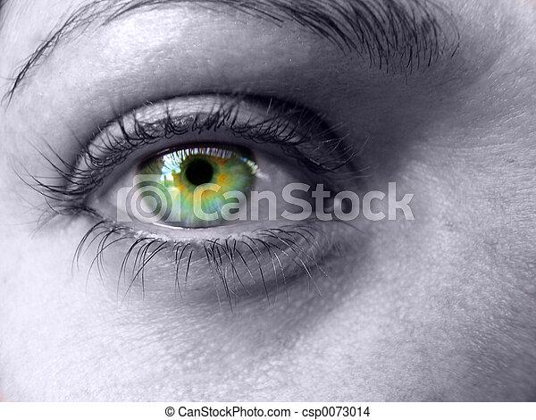 Colorful Eye - csp0073014