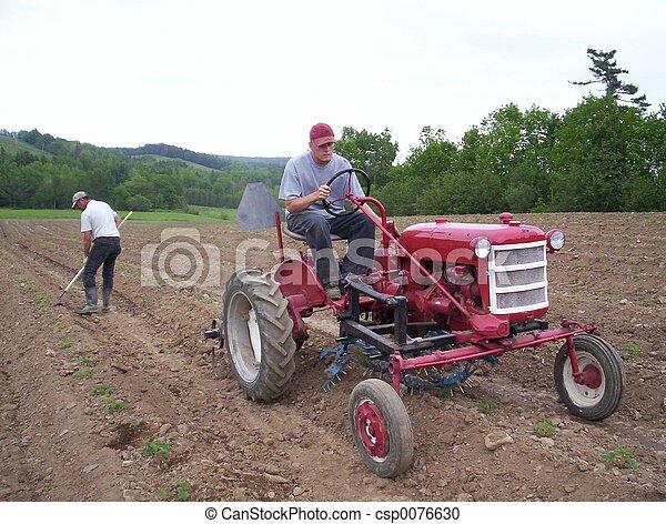 homens, trabalhando - csp0076630
