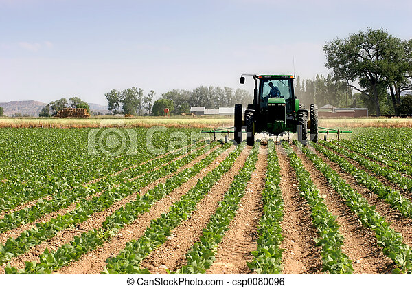 tractor plowing the fields - csp0080096