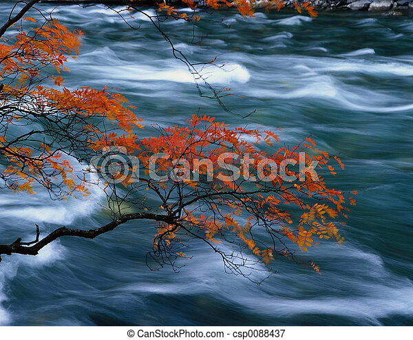 otoño - csp0088437