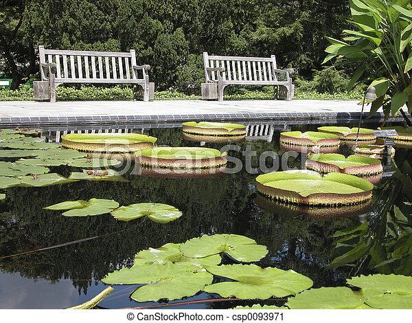 Botanical Gardens 1 - csp0093971