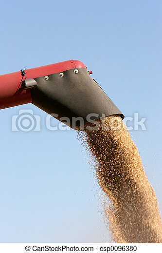 barley harvest - csp0096380