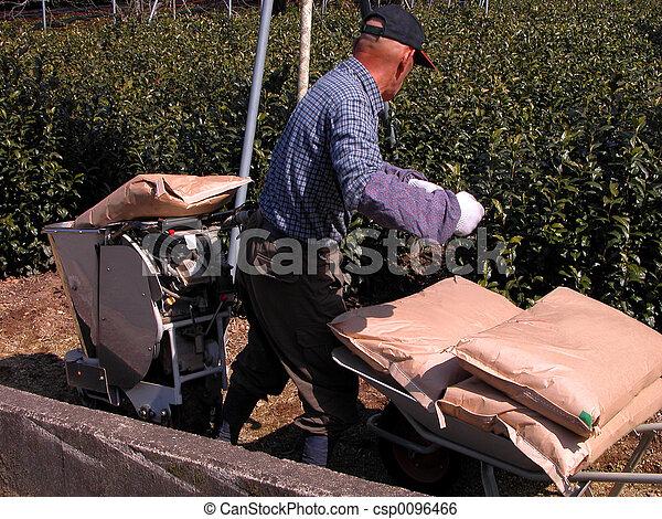 Farmer Working - csp0096466