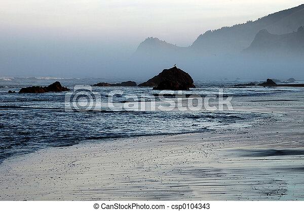 Oregon Sunrise - csp0104343