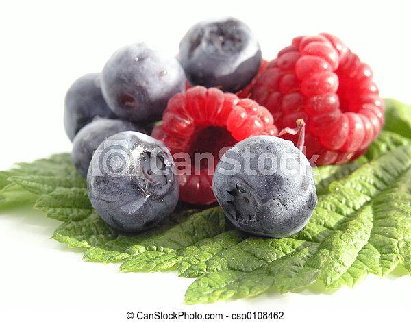 Bilberry and Raspber - csp0108462