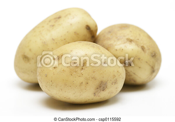 Potatoes - csp0115592
