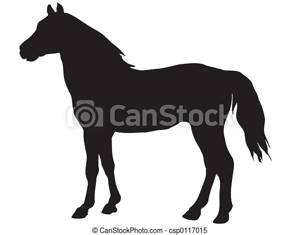 horse - csp0117015