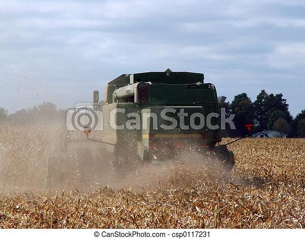harvest time - csp0117231