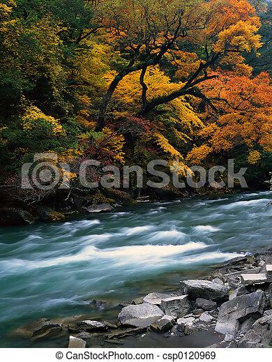 Autumn - csp0120969