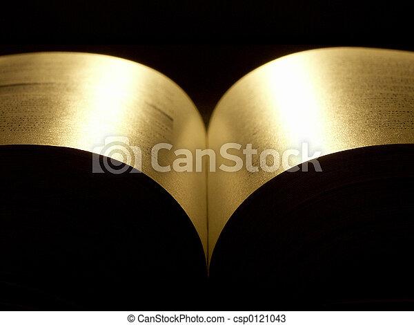 golden book - csp0121043