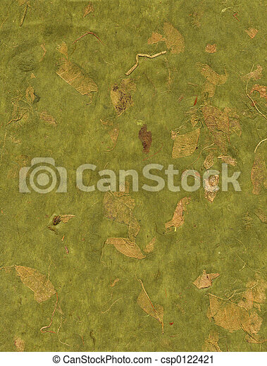 Texture Series - Green Paper with Leaves - csp0122421