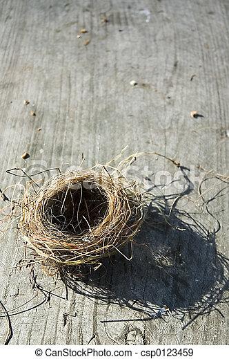 búvóhely, madarak - csp0123459